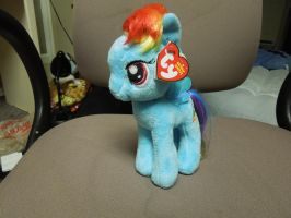 Rainbow Dash the Pony by Tailji