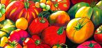 Tomatoes by PaintMyWorldRainbow