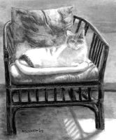Cat In Chair by mbeckett