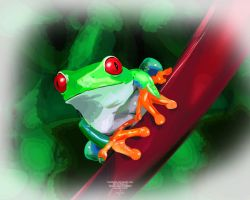 Frog by red-FeNIks
