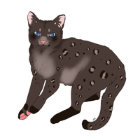 leopard cat adopt! by Madylyne