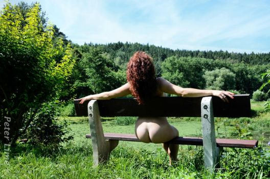the bench by PeterLime