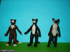 Claymation Cats by Xiakeyra