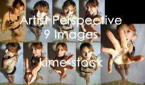 Artist Perspective by kime-stock