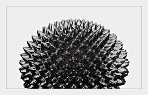 black urchin by knold