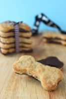 Chicken and Choc Dog-friendly Cookies by cakecrumbs