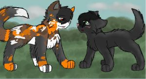 You need me, Hollyleaf by CascadingSerenity