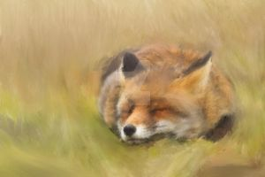 Just A Happy Foxy by Zachary0701