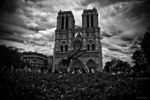 Notre Damn by PaalM