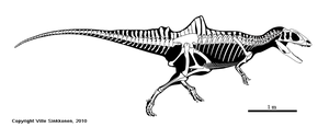 Concavenator skeletal by Dinomaniac