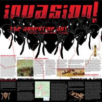 Invasion by W00-dy
