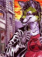 Aceo - NightFell by Alassa