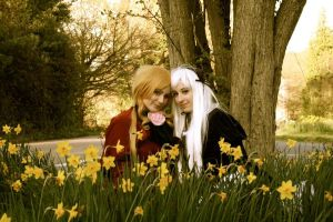 Shinku and Suigintou: Together Once by missy2laina