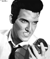 Elvis by Ponzarello