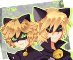 Two Chat Noir by Anini-Chu