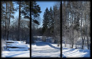 March. Winter continues... by Yancis