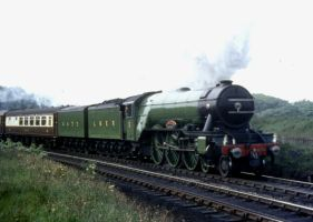 Flying Scotsman by lampwortroy