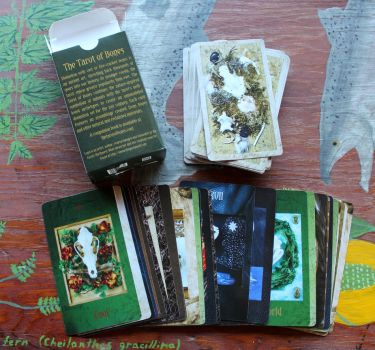 Discounted Tarot of Bones Decks FS! by lupagreenwolf