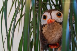 Knitted Owl 2 by Jane-Rt