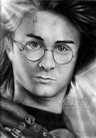 Harry Potter tribute by keikei11