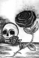Skull with Black Tears and Roses by Natas-67