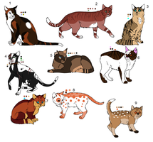 Warrior Cat Adopts OPEN by SwiftyAndCyber