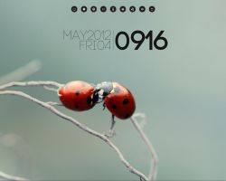LADYBUGS by Timeeey