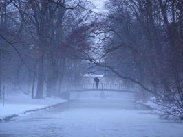 The essence of winter by Poetry-of-Shades