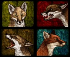The Red Pack by Culpeo-Fox