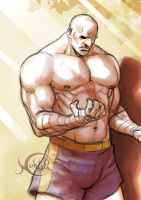 Sagat's thoughts by noktyl