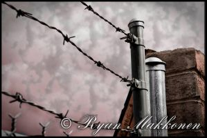 Barb Wire Photography 3 by crmakkart