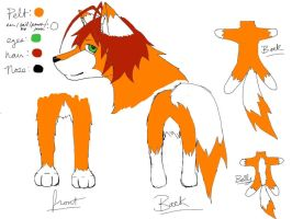 Derp Fox Official Reference Sheet (colored) by CrypticGrin