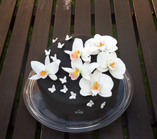 Black Orchid Cake by ginkgografix