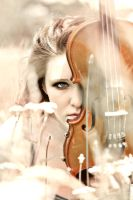 the violin by nostalgicmind