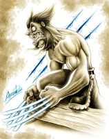wolverine by b2 by andrebdois