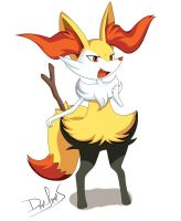 Braixen by DannyRooS