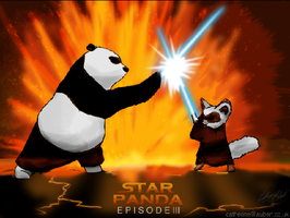 Kung-FU JEDI by shadow-of-insanity