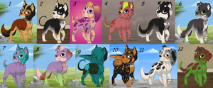 CHEAP ADOPTABLES ~ OPEN! by tiiqer
