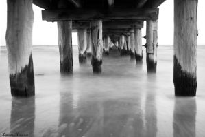 Under Altona Pier BW by DanielleMiner