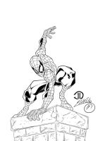 Spider-Man Ink # 1 by SWAVE18