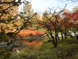 japanese garden bonn 75 by ingeline-art