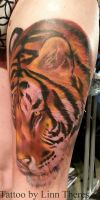 Tiger by Mythos-Tattoo