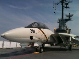 Jolly Rogers F-14A by vash68
