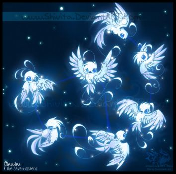 Cosmic Zoo: Pleiades by Shivita