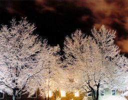 snowy night 2 by snipes104