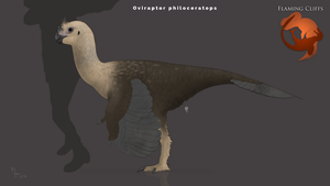 Flaming Cliffs Female Oviraptor by Midiaou