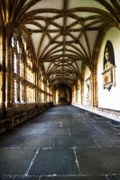 Wells Cathedral by CharmingPhotography