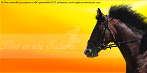 lost in the Sahara by ponies4life-2013