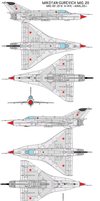 Mikoyan-Gurevich MiG-21I by bagera3005