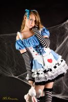 Classic Alice Concept 5 by Truly-Little-Alice